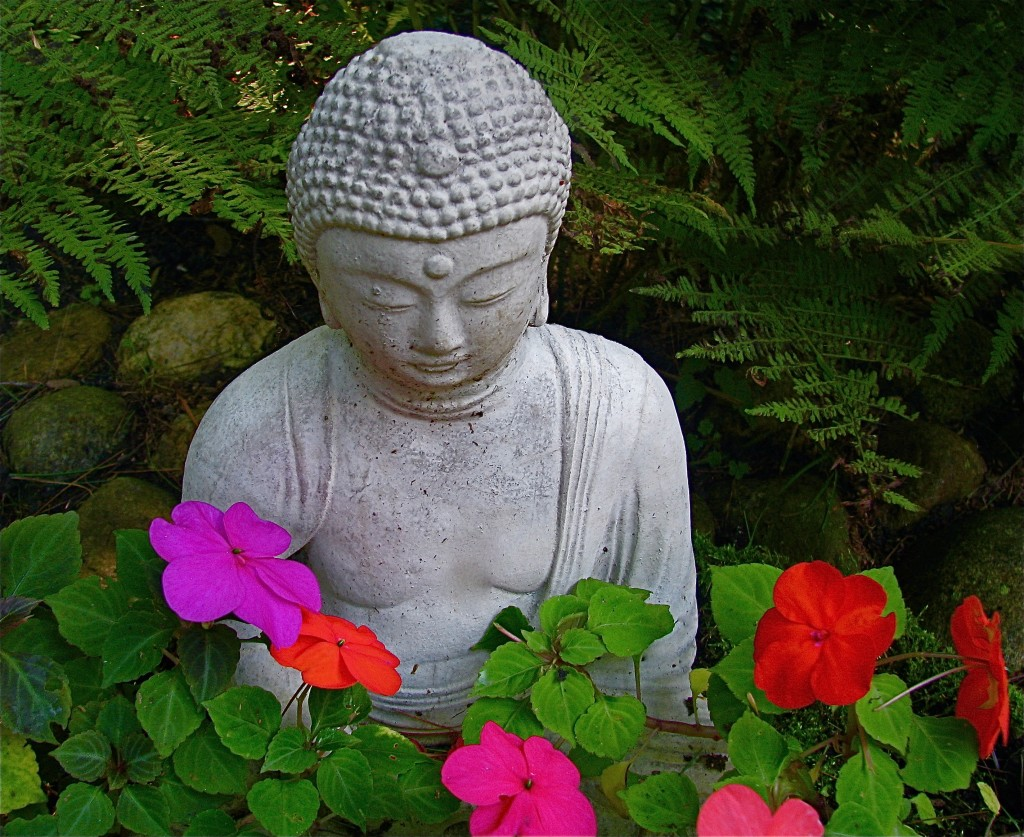 Our Buddha Loves His Impatiens