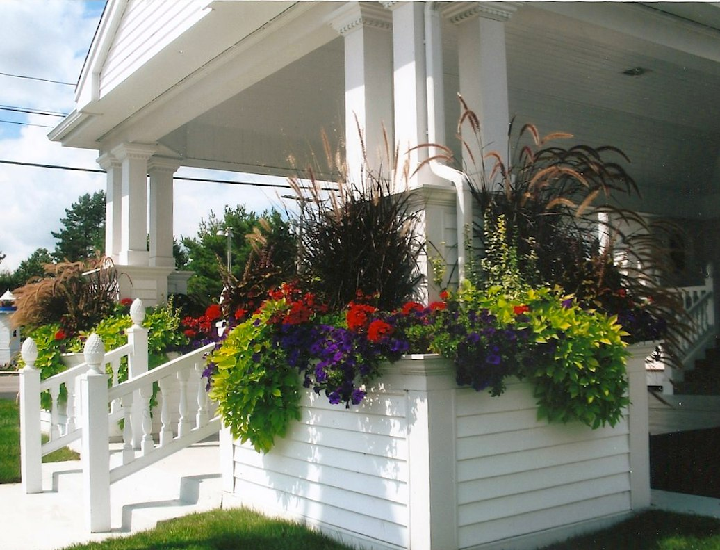Lovely plantings on the porch.