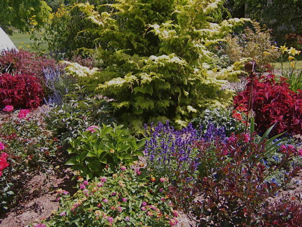 Lovely display garden.