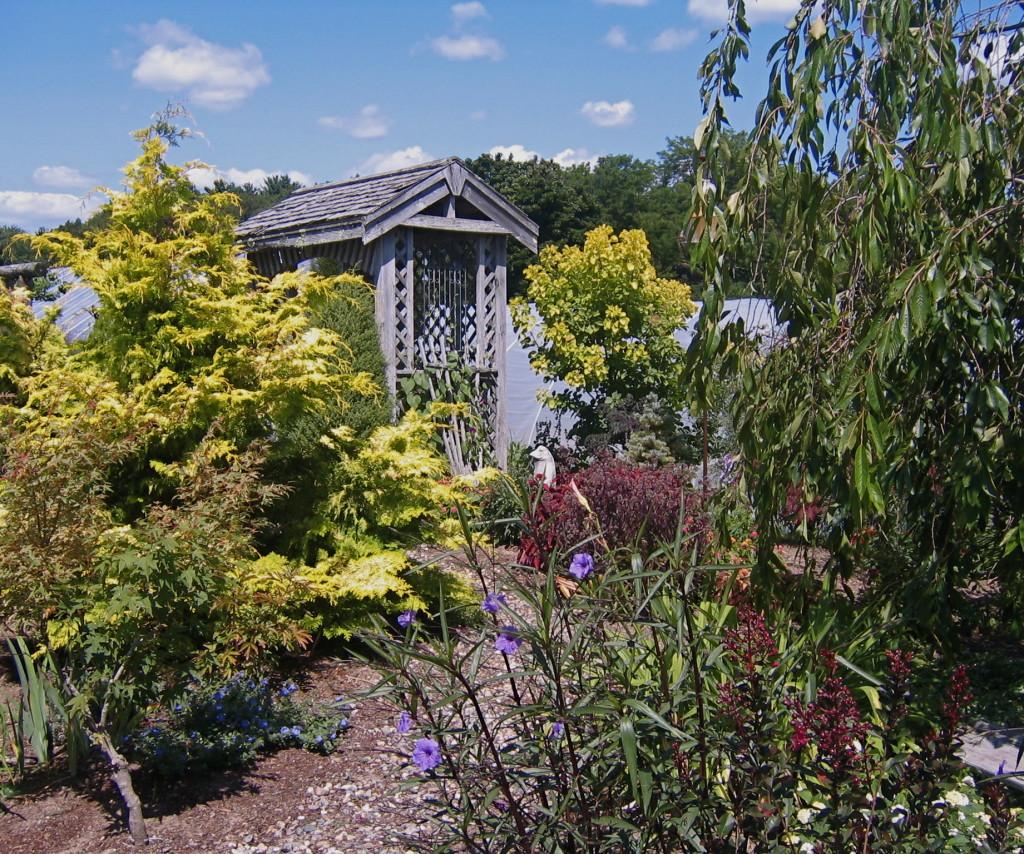 More gardens.
