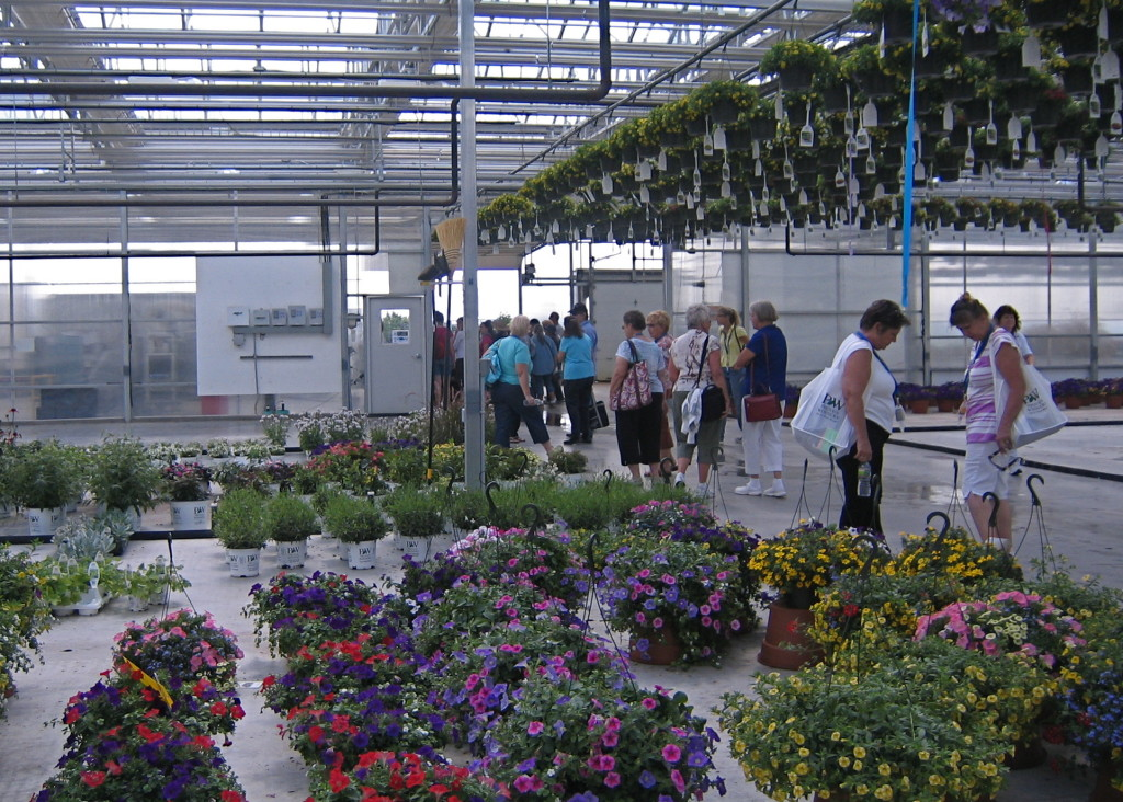 Visitors in the green house.
