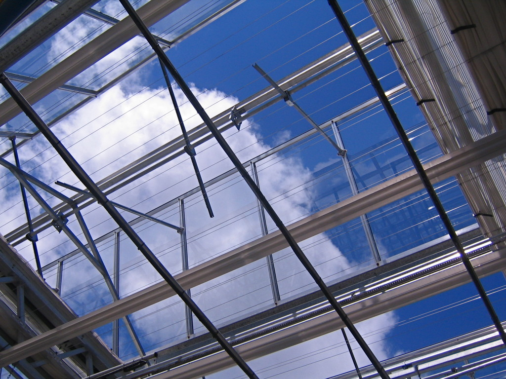 The greenhouse roof lets in the sunshine.
