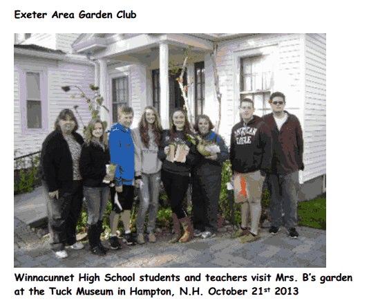 Mrs Bs Garden 1